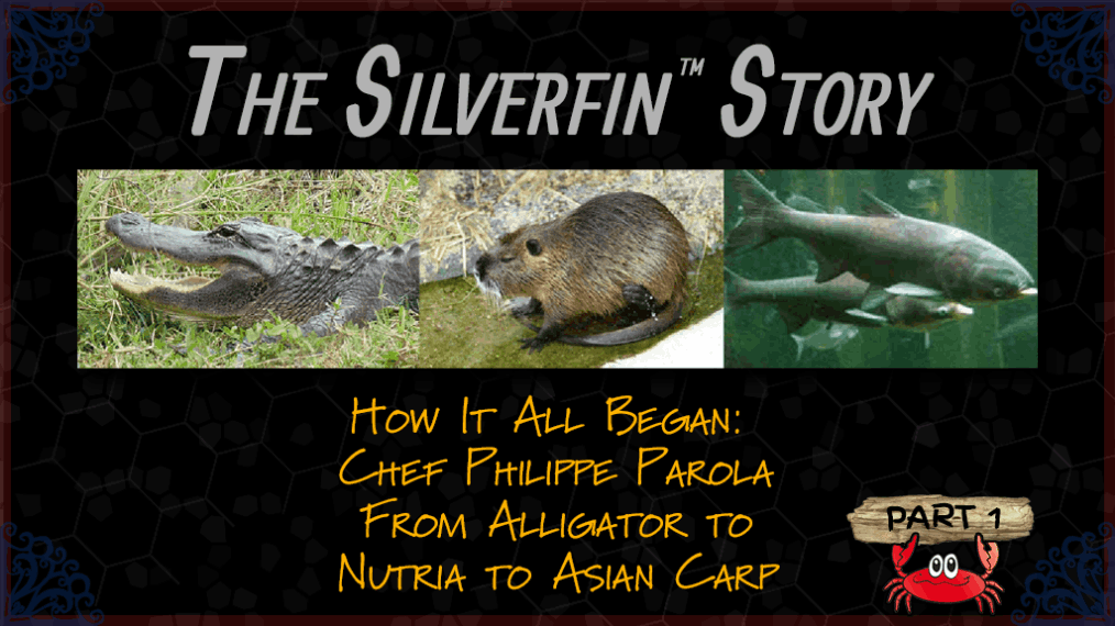 The Silverfin™ Story